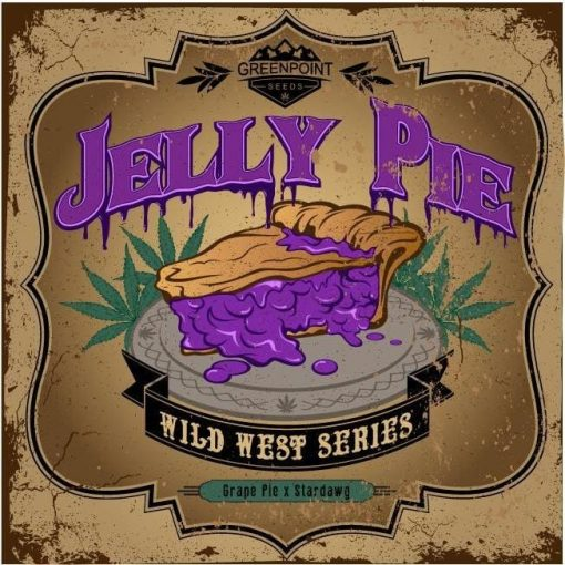 Jelly Pie Strain Greenpoint Seeds