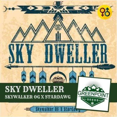 Sky Dweller - Skywalker OG X Stardawg Cannabis Seeds | Greenpoint Seeds