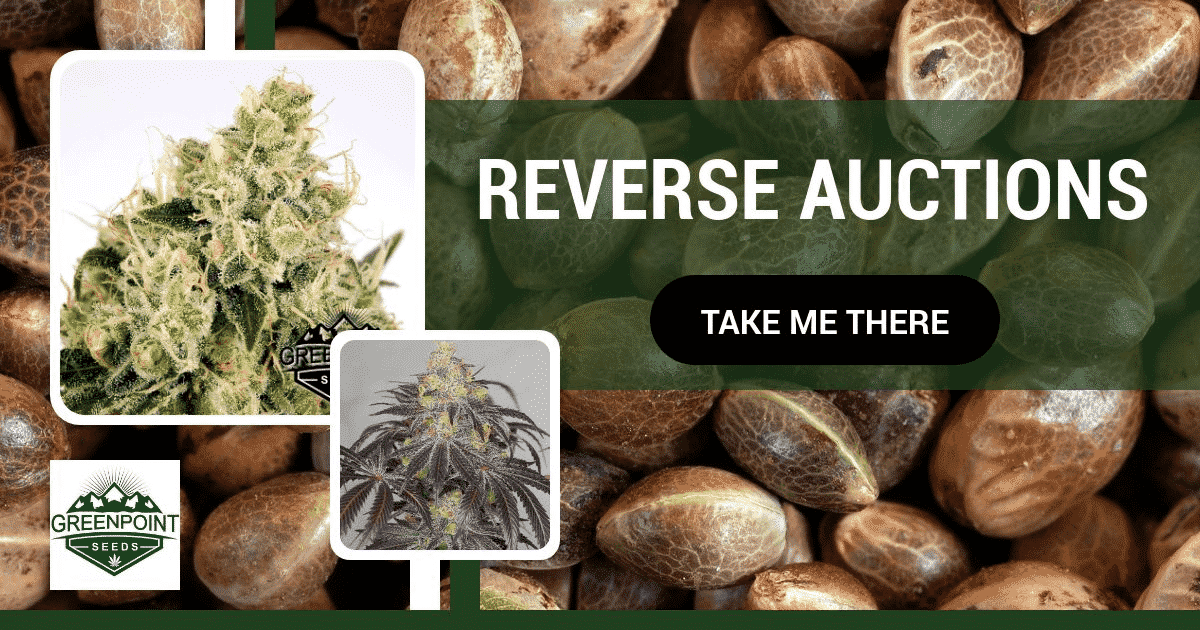 Reverse Auctions Weekend - GPS Seed Bank