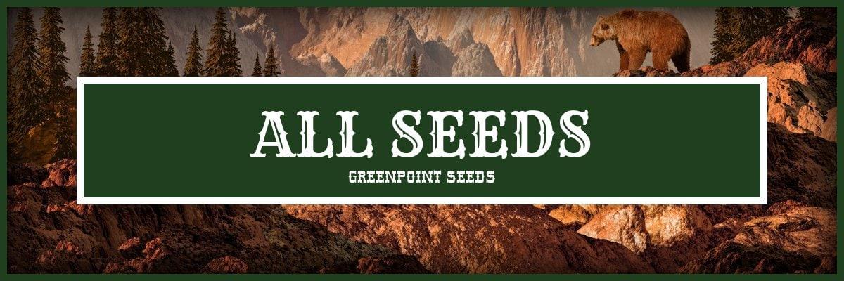 All Cannabis Seeds
