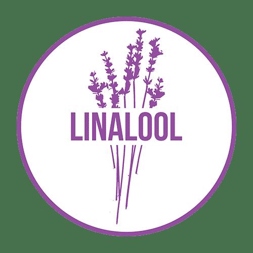 Linalool Terpene - Cannabis Terpenes