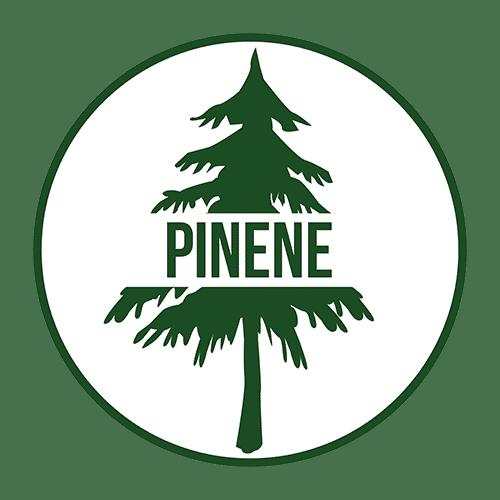Pinene Terpene - Cannabis Terpenes