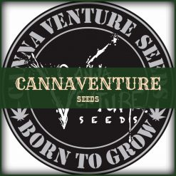 CannaVenture Seeds