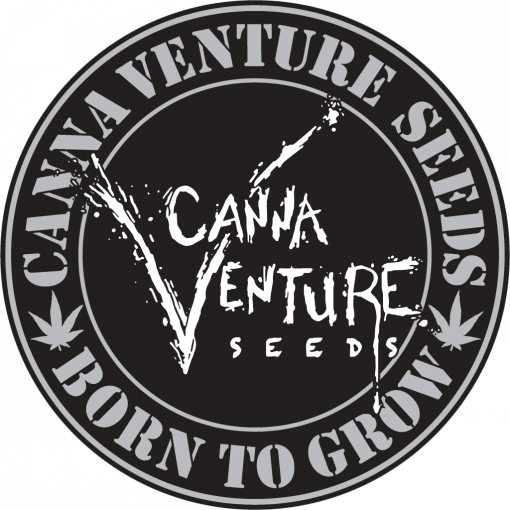 CannaVenture Seeds | Cannabis Genetics - Greenpoint Seeds