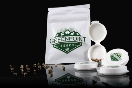 Greenpoint Cannabis Seed Packs