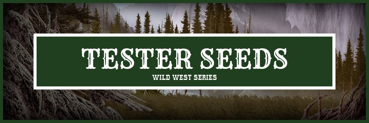 Tester Cannabis Seeds - Wild West Series