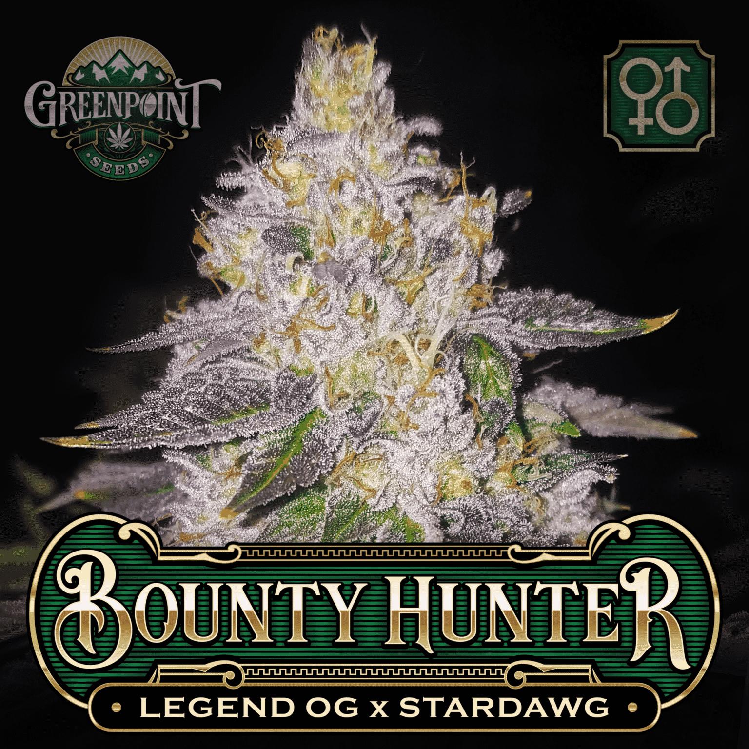 Legend OG x Stardawg Seeds - Bounty Hunter Cannabis Seeds - US Seed Bank