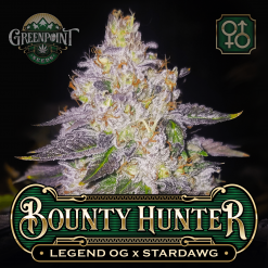 Legend OG x Stardawg Seeds - Bounty Hunter Cannabis Seeds - US Seed Bank