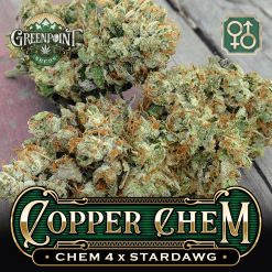 Chem 4 x Stardawg Seeds | Copper Chem Cannabis Seeds - US Seed Bank