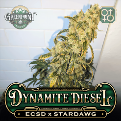 ECSD x Stardawg Seeds | Dynamite Diesel Cannabis Seeds