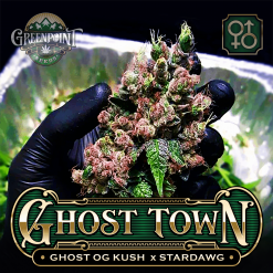 Ghost OG Kush x Stardawg Seeds | Ghost Town Cannabis Seeds