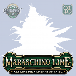 Key Lime Pie x Cherry AK-47 IBL Seeds - Maraschino Lime Cannabis Seeds - Colorado Seed Bank