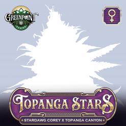 Topanga Stars Feminized Cannabis Seeds - Stardawg Corey x Topanga Canyon Strain - Greenpoint Seeds