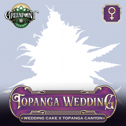 Topanga Wedding Feminized Cannabis Seeds - Wedding Cake x Topanga Canyon - Buy Feminized Seeds