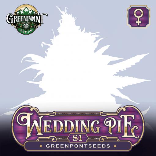 Wedding Pie S1 Feminized Cannabis Seeds - Greenpoint Seeds