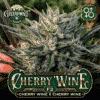 Cherry Wine BX Cannabis Seeds - Greenpoint Seeds
