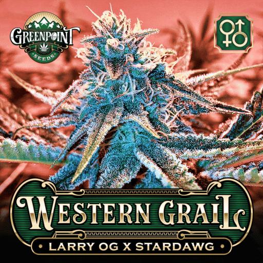 Larry OG x Stardawg Cannabis Seeds Western Grail Strain