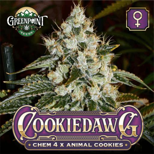 Cookiedawg Feminized Cannabis Seeds