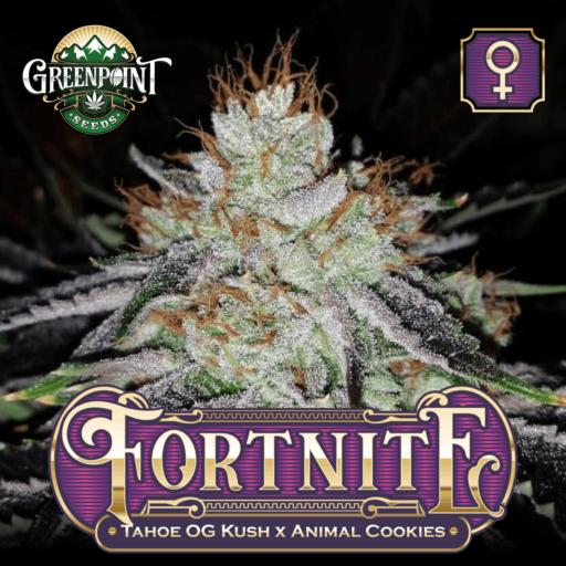 Fortnite Feminized Cannabis Seeds