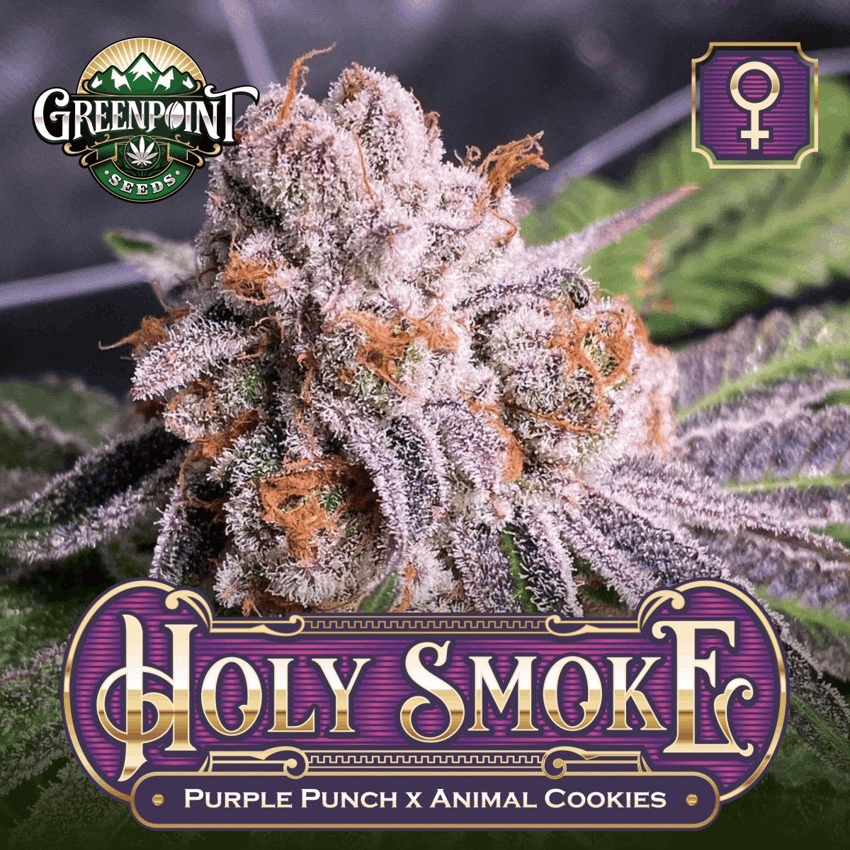 Holy Smoke Feminized Cannabis Seeds
