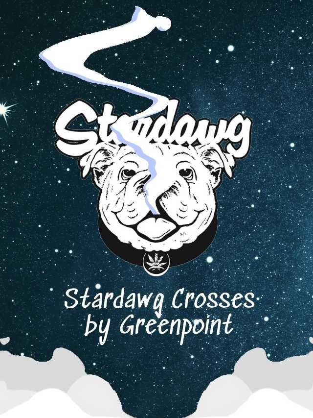 Greenpoint's Stardawg Strains